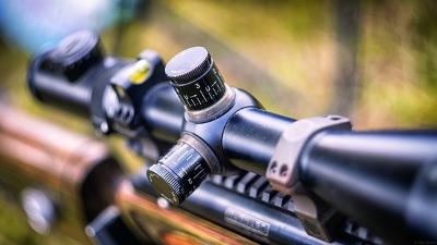 Jagd in Österreich